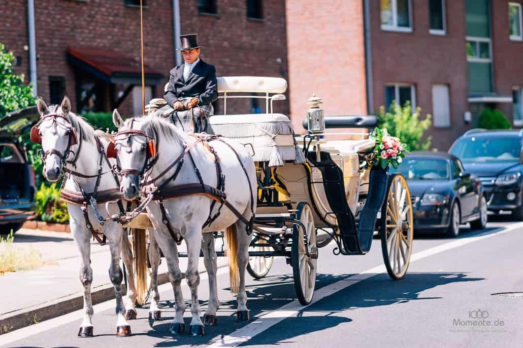Kloster-Kamp Pferde Hochzeitskutsche